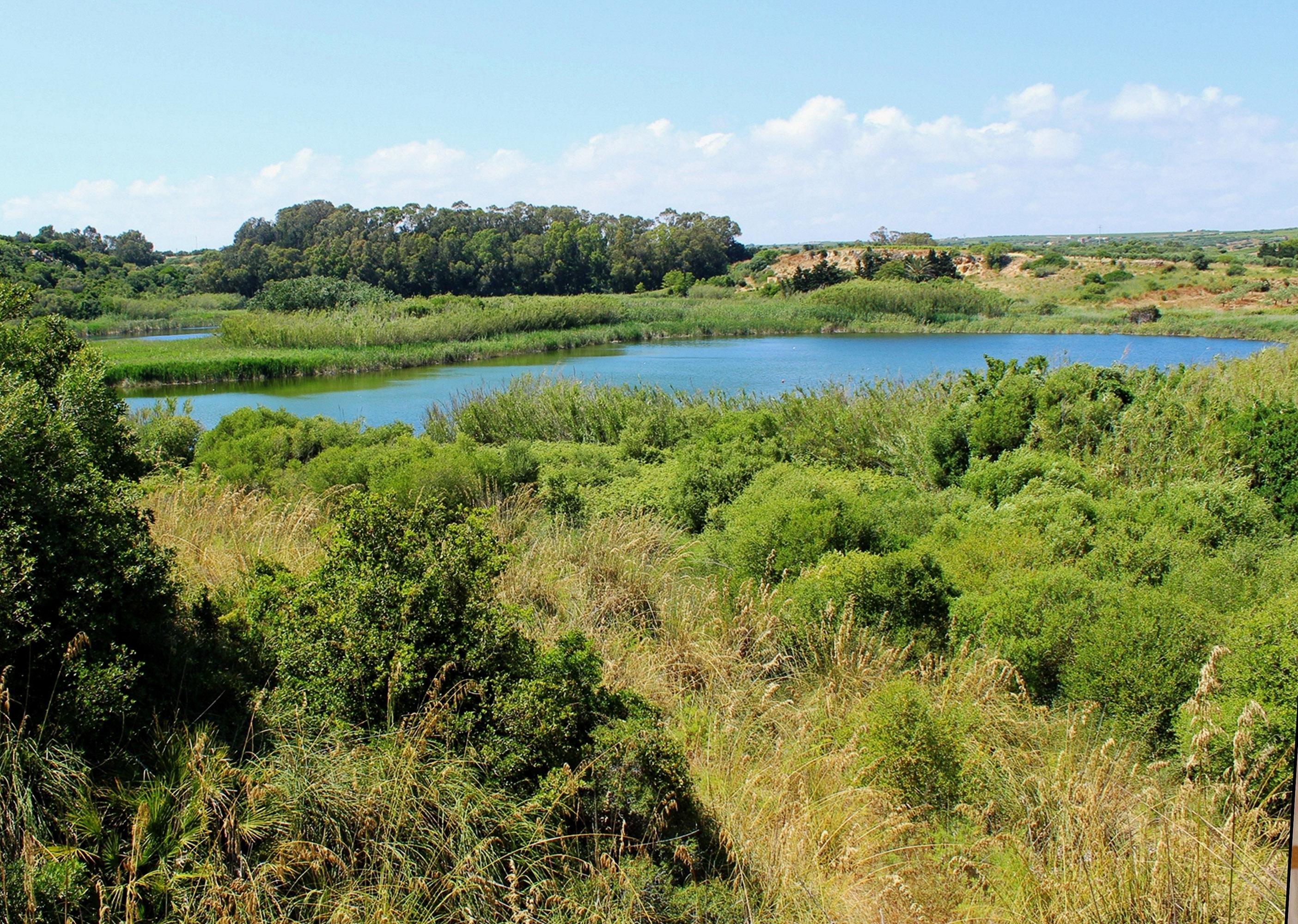 Lago Preola