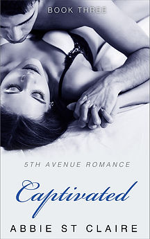 Captivated Bookcover