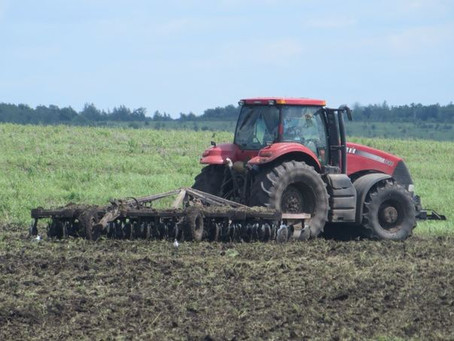 37 тысяч га введено в сельхозоборот Пензенской области к весенней посевной 2021