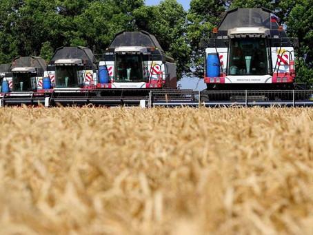 Жатва 2021: уже больше 2 млн зерна у ростовских аграриев