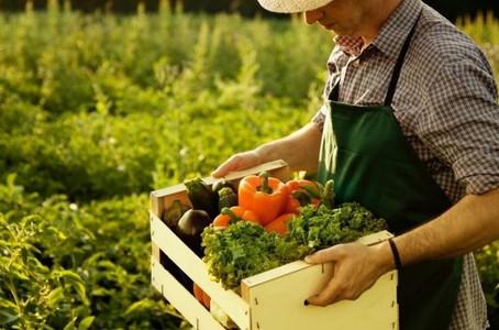 Минсельхоз Крыма заключил соглашения с 17 фермерами республики на получение средств грантовой поддер