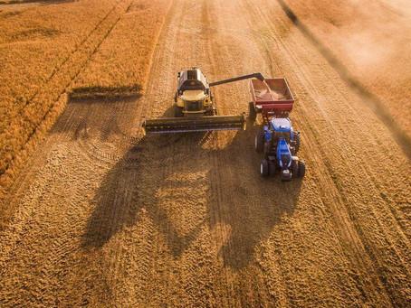 Россия на 4 сентября намолотила 105,6 млн тонн зерна