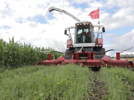 Практики точного земледелия активно внедряют аграрии Красноярского края