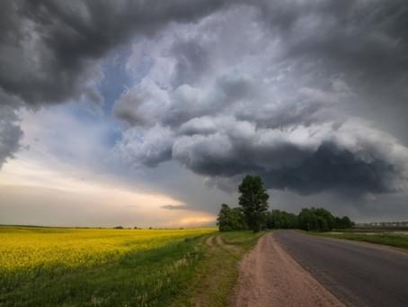 Майские дожди не помогут озимым на юге России в случае засухи