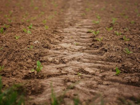 """Яровой сев 2021 приостановлен, что думает отечественный производитель сельхозтехники """"Ремсинтез"""""""