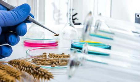 В Липецкой испытательной лаборатории приступили к исследованиям зерна