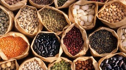 Россия делает ставку на озимые культуры и семена отечественной селекции