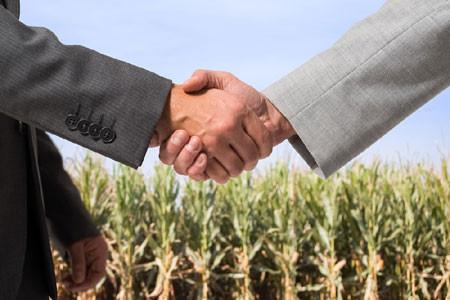 На вебинаре в Челябинской области рассказали, как попасть в федеральную торговую сеть сельхозкоопера