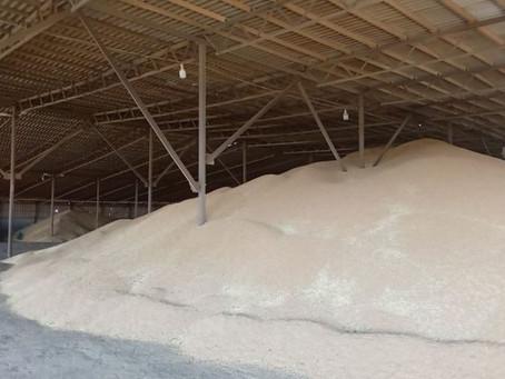 Хлебоприемная структура Ставропольского края готова принять на хранение 10 млн тонн зерна