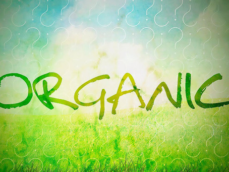 В Свердловской области впервые заложен опыт по органическому земледелию