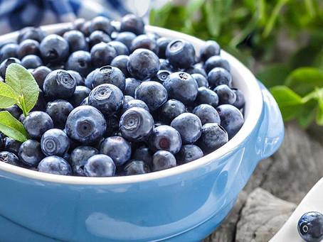 Черника – самый популярный продукт в США в категории органик