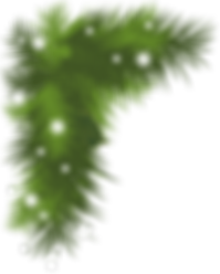 snowy-pine-bough-clipart-1_edited.png
