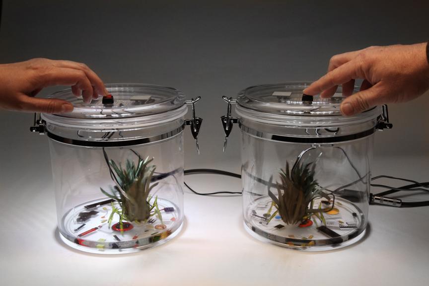 PlantBot Attackaratus