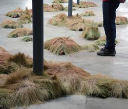 Portable Wheat Field (decline) 2009
