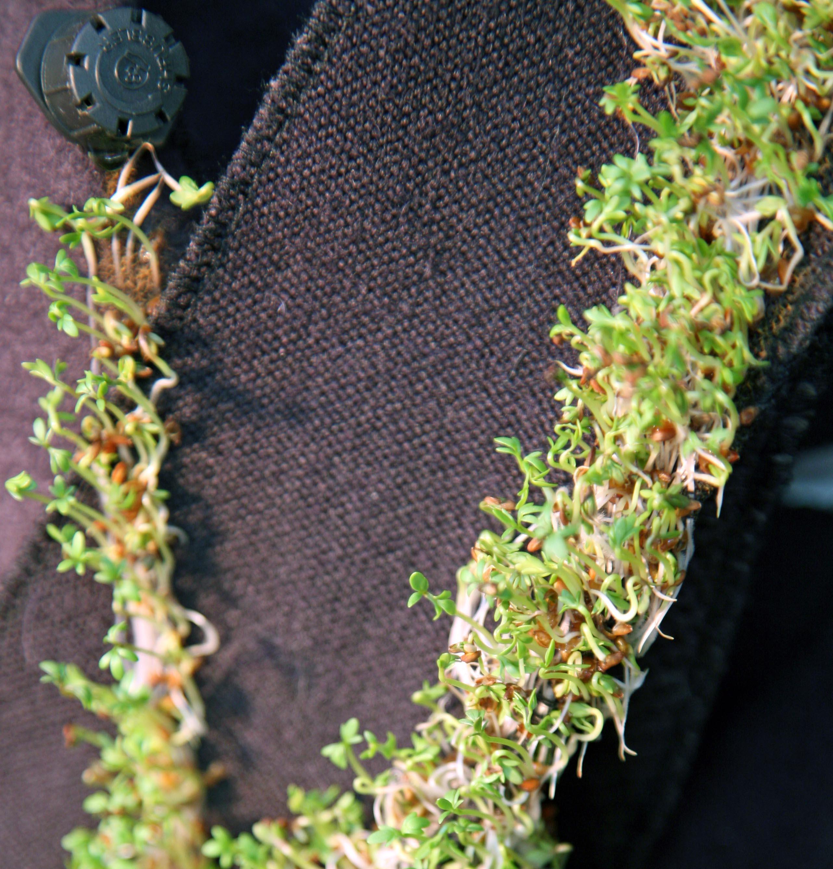 Drape detail