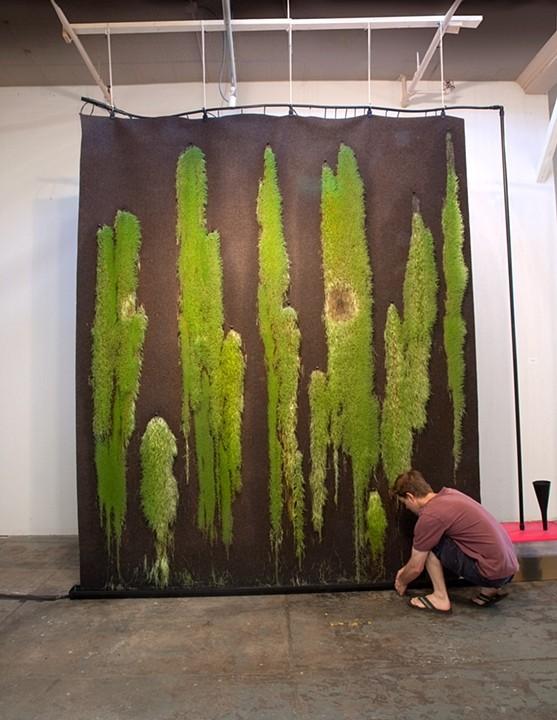 Chia Curtain 2009