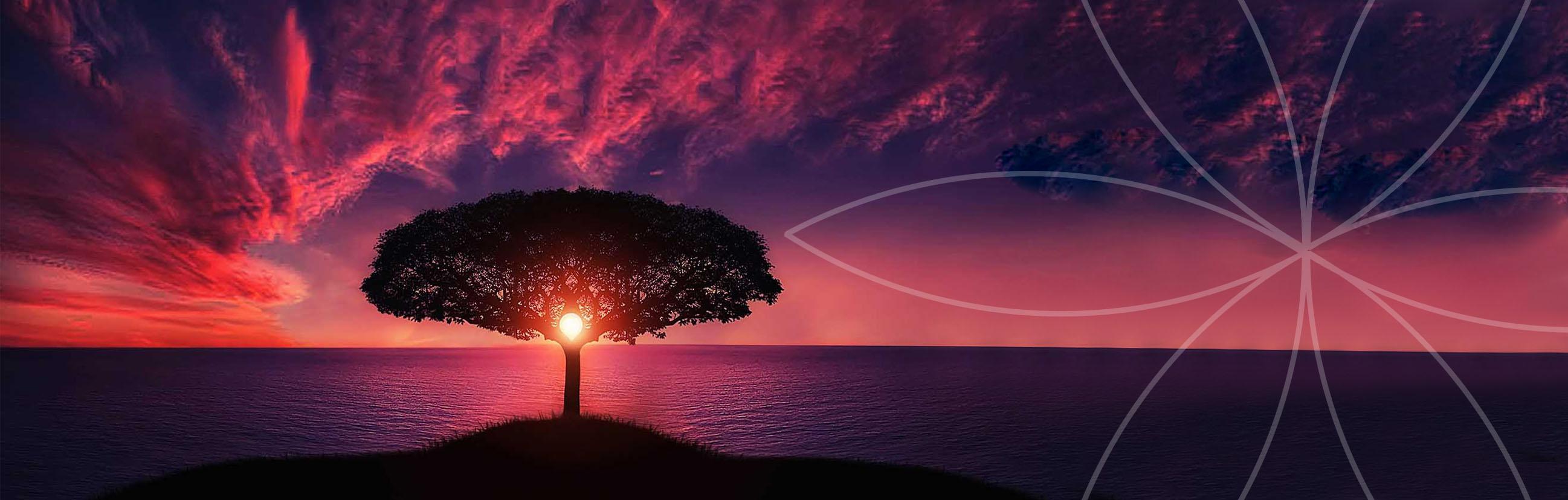 Coucher de soleil rose