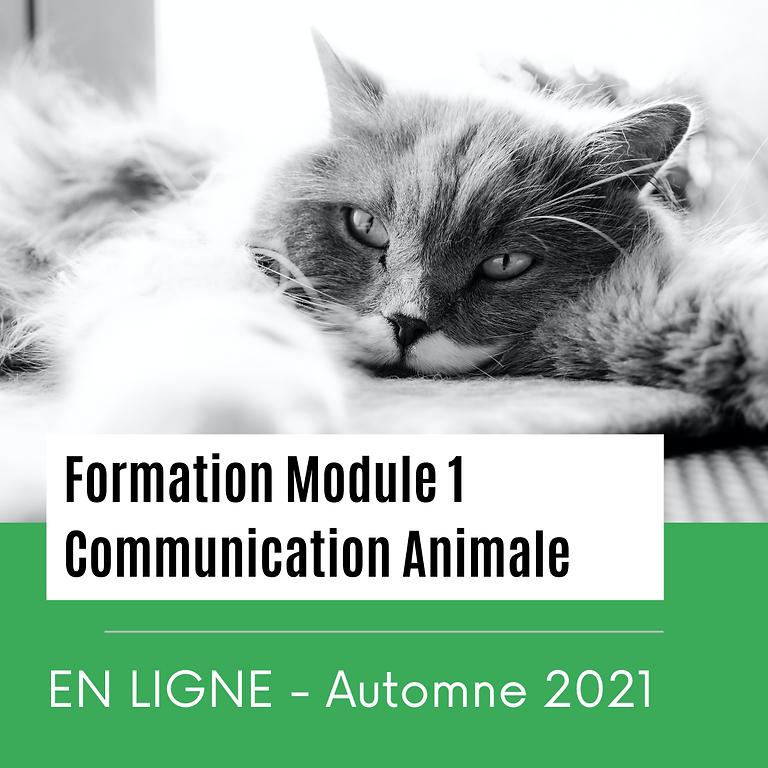 Formations en Ligne - Module 1 - Automne 2021