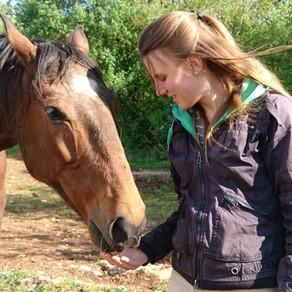Comment choisir votre formation en #Communication Animale?