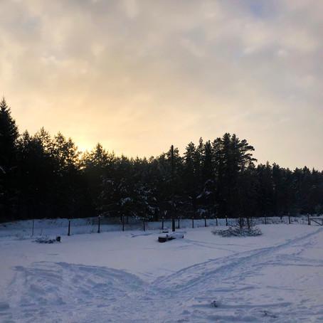 Pierwsza zima na wsi
