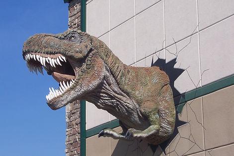 T. Rex Head, Glendive Dinosaur & Fossil Museum