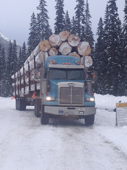 Off Road Load of Logs