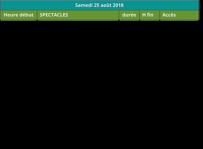 Grille_spectacle_journée_samedi_.png