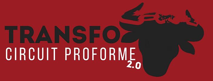 CIRCUIT PROFORME TRANSFO.png