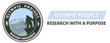 olympicproject.png