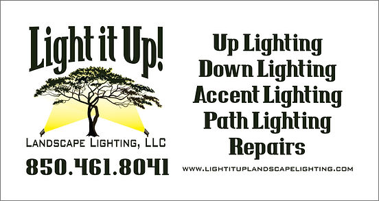 Light it up new logo.jpg