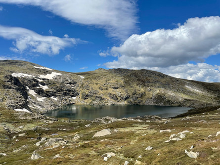 Hiking in Thredbo - Nature at its Best!