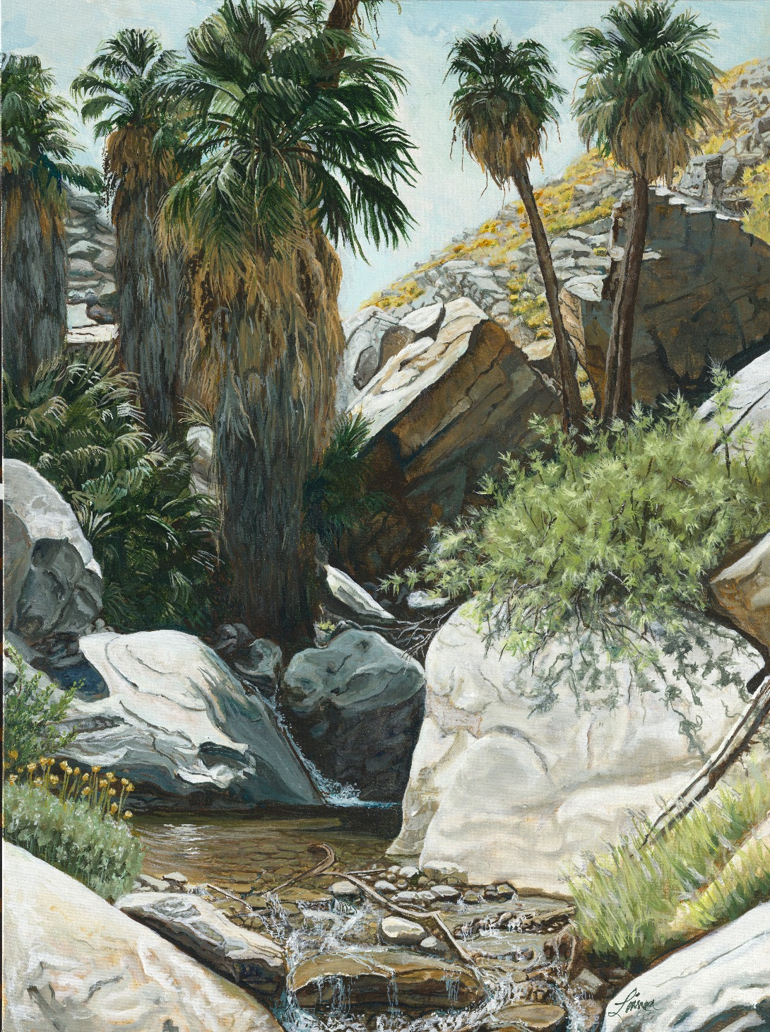 """Indian Canyon Oasis"""