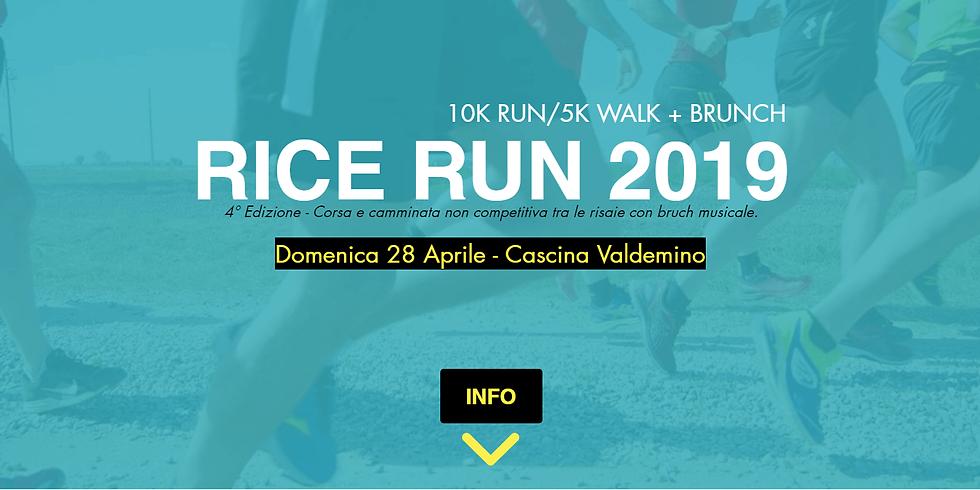 Rice Run 2019