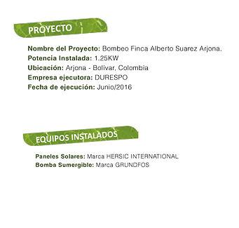 plantillas2.jpg