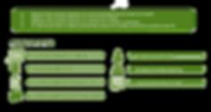 Estructura-Comercial-Distribuidor-Tradic