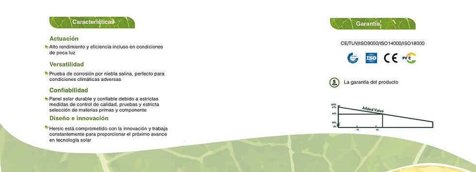 plantilla de caracteristicas-01.jpg
