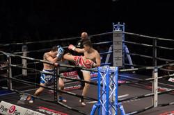 Fightnight Nürtingen 2015