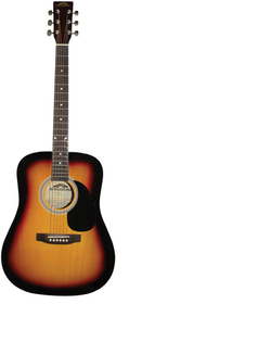 acoustic guitar 1