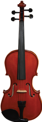 Meadow Violin