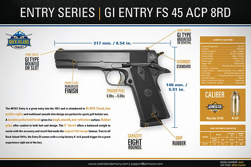 RIA GI ENTRY FS 45ACP