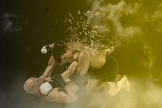 MMA Graphic