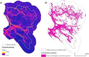 Bonnin et al. Fig2.jpg