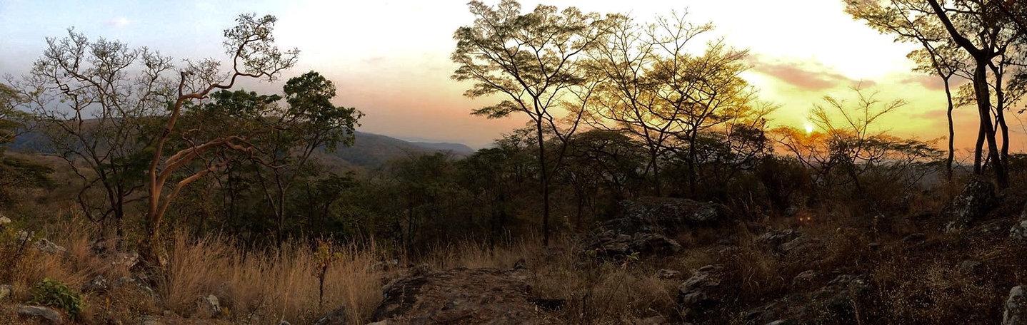 Adrienne-landscape1.jpg