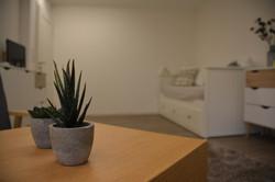 Tisch Pflanzen Sicht auf Couch.JPG