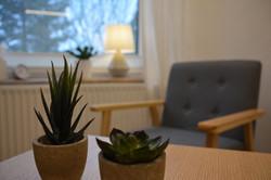Pflanzen Blick Richtung Fenster.JPG
