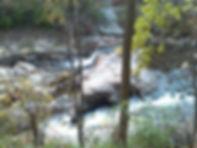 Gwynns Falls.jpg