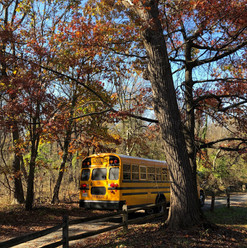 School bus on fall day