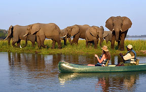 best-time-to-visit-zambia.jpg