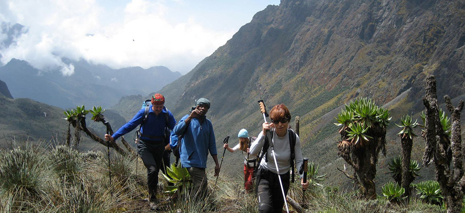 rwenzori-mountains-trekking
