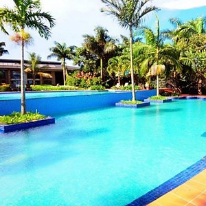 Hotels & Safari Lodges
